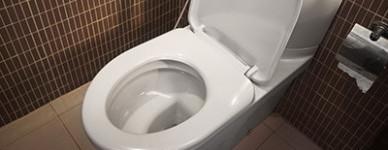 desfundari WC Roman